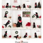 Kuche_Pixel_In-the-box_Photosession_Dina_Strumin_Snow