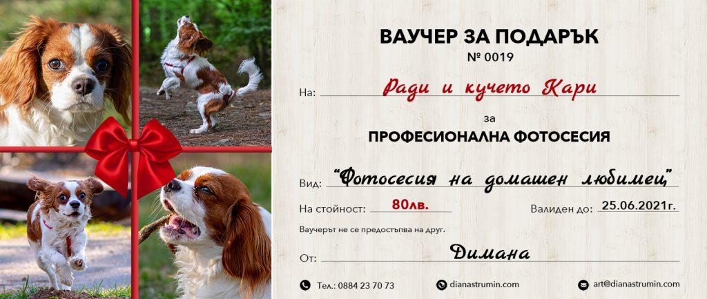 Vaucheri-Podaryk-fotosesiya-domashen-lyubimets-diana-strumin